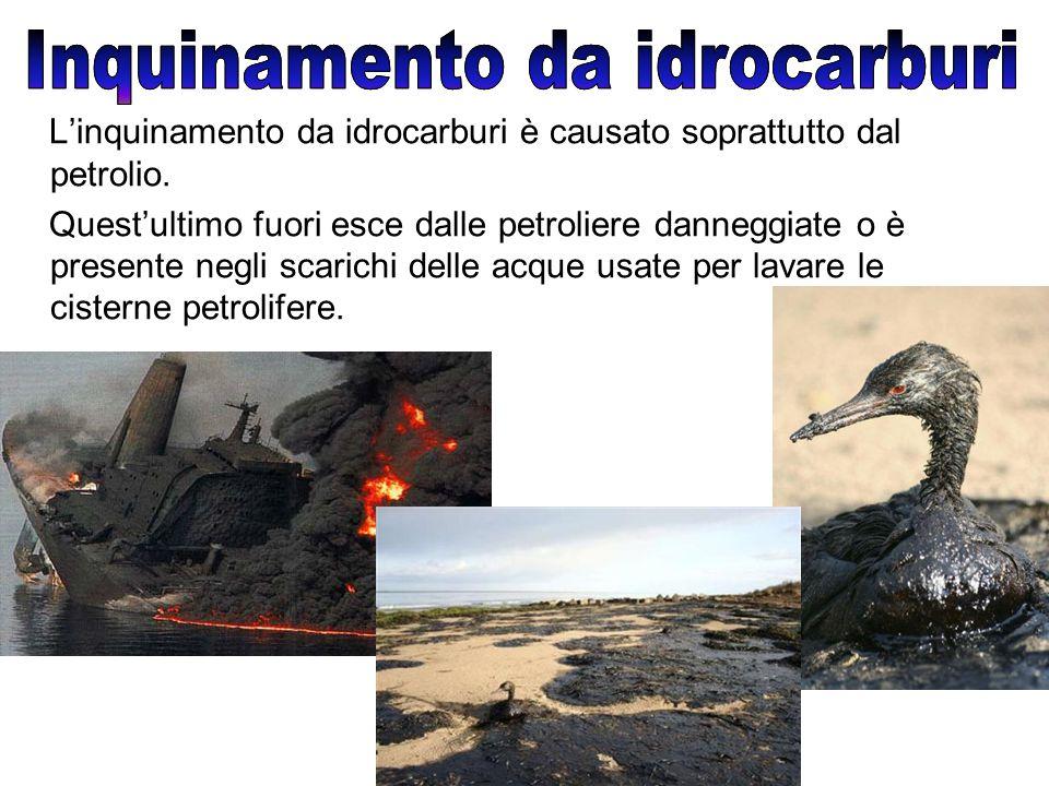 Inquinamento da idrocarburi Inquinamento da idrocarburi
