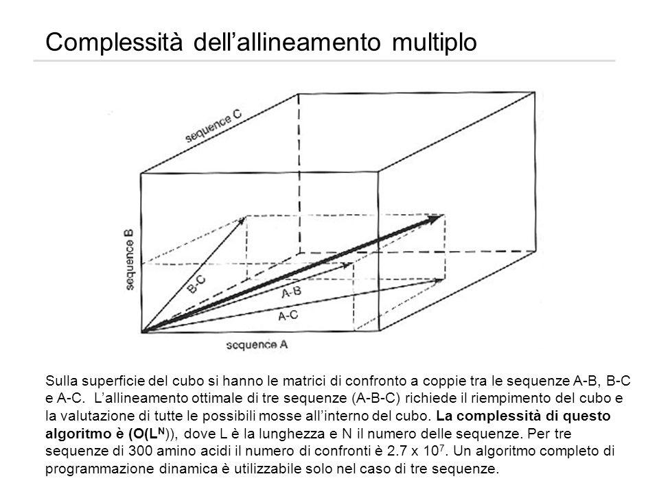 Complessità dell'allineamento multiplo