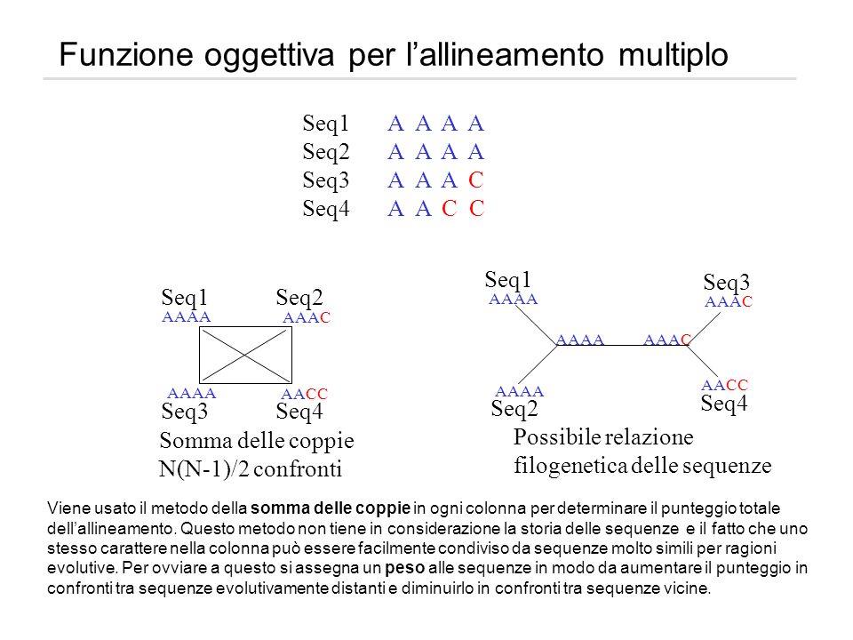 Funzione oggettiva per l'allineamento multiplo
