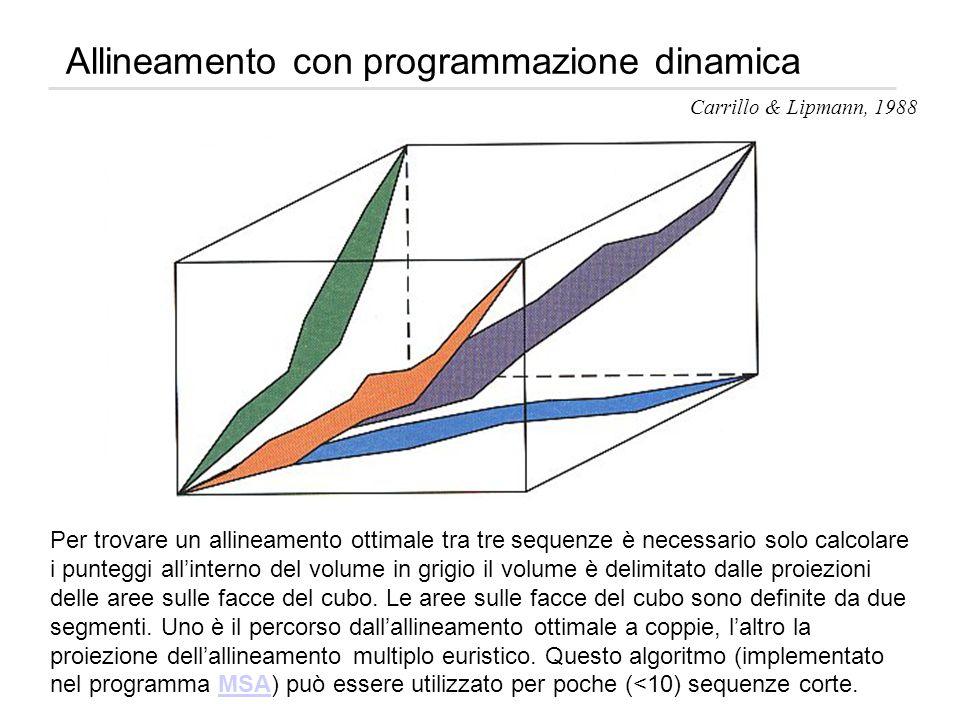 Allineamento con programmazione dinamica