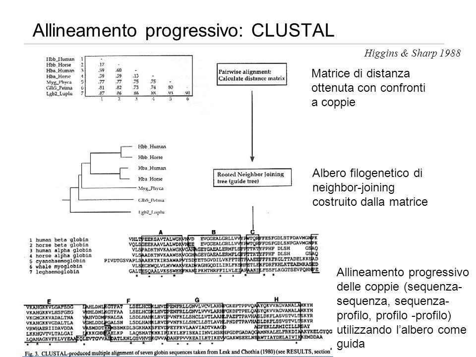 Allineamento progressivo: CLUSTAL