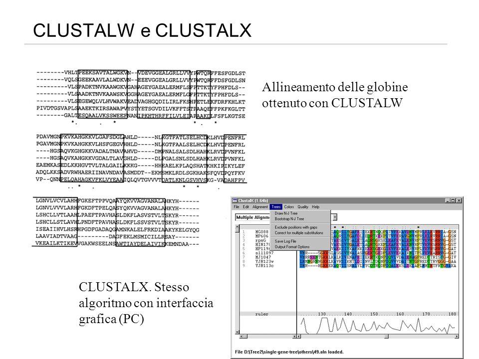 CLUSTALW e CLUSTALX Allineamento delle globine ottenuto con CLUSTALW