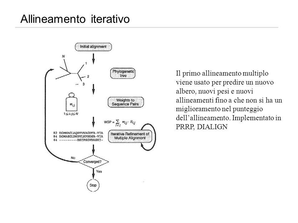 Allineamento iterativo