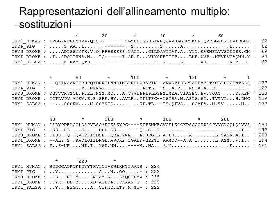 Rappresentazioni dell'allineamento multiplo: sostituzioni