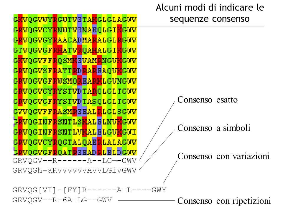 Alcuni modi di indicare le sequenze consenso