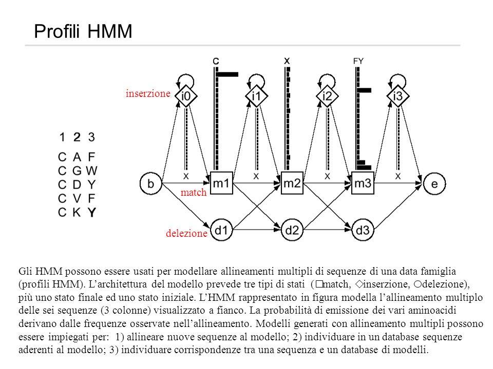 Profili HMM inserzione match delezione