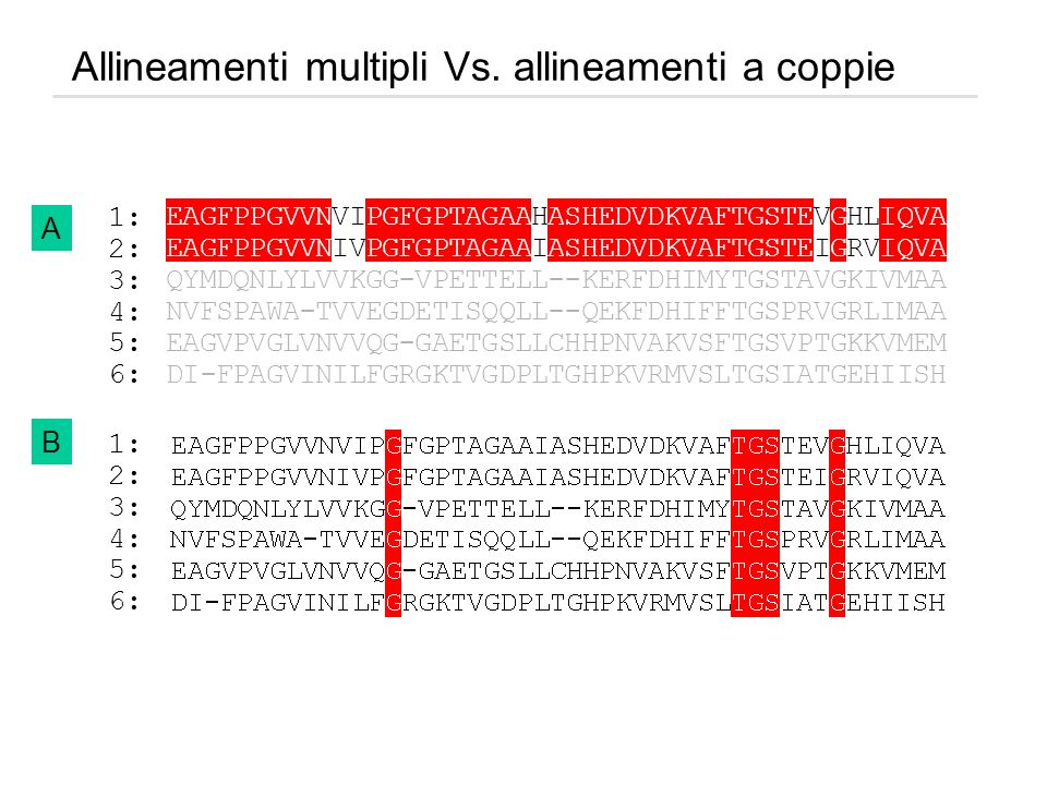 Allineamenti multipli Vs. allineamenti a coppie
