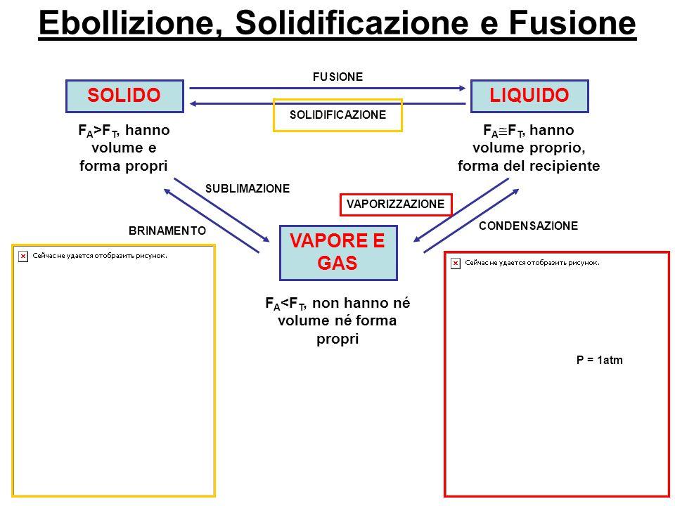 Ebollizione, Solidificazione e Fusione