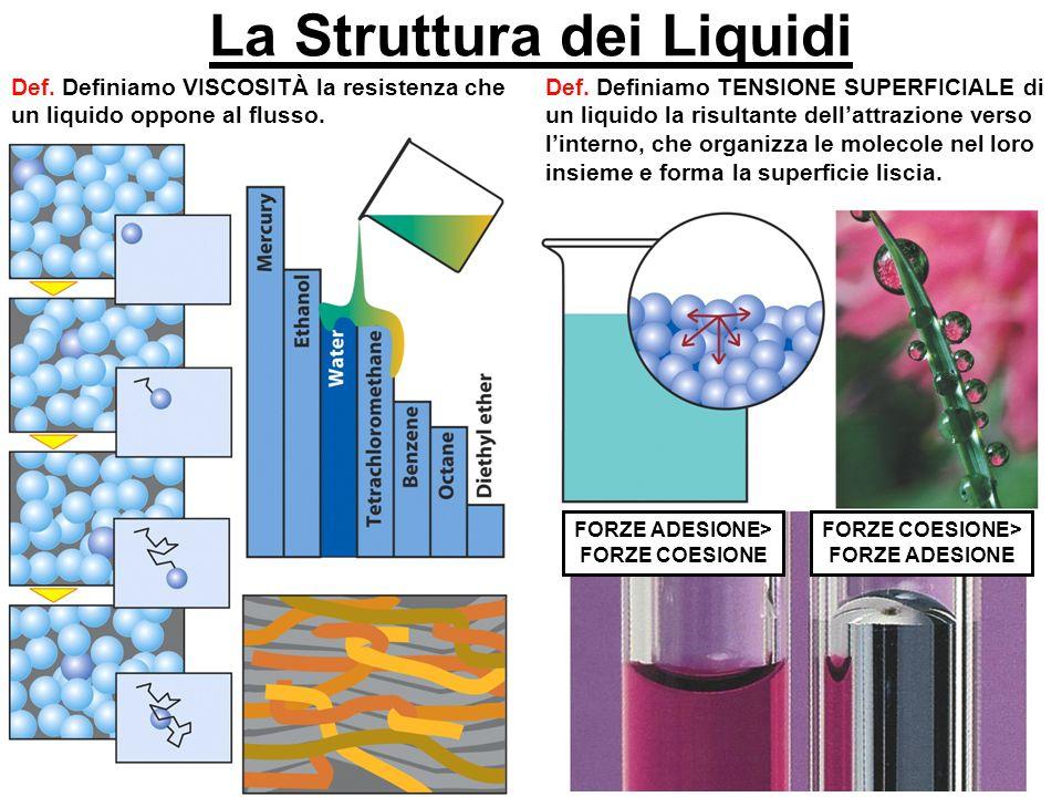 La Struttura dei Liquidi