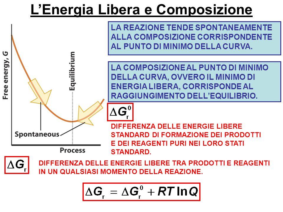 L'Energia Libera e Composizione