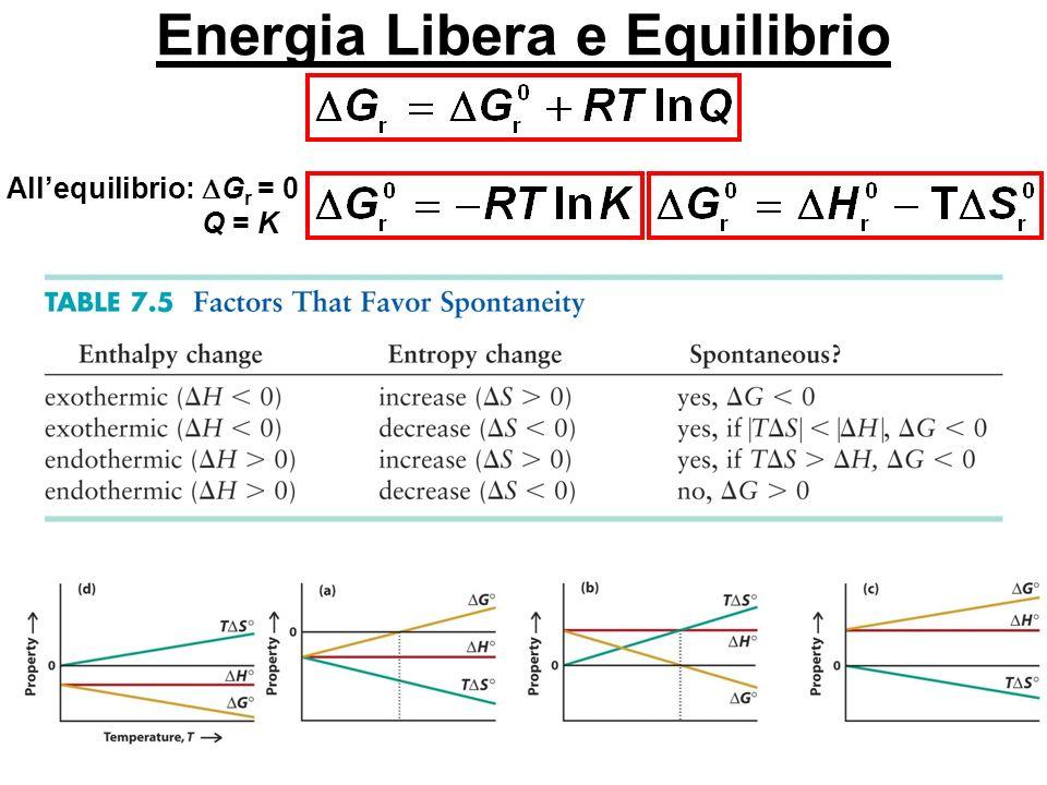 Energia Libera e Equilibrio