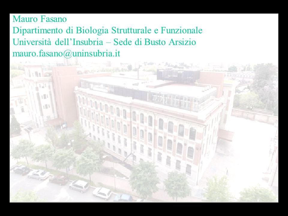 Mauro Fasano Dipartimento di Biologia Strutturale e Funzionale. Università dell'Insubria – Sede di Busto Arsizio.
