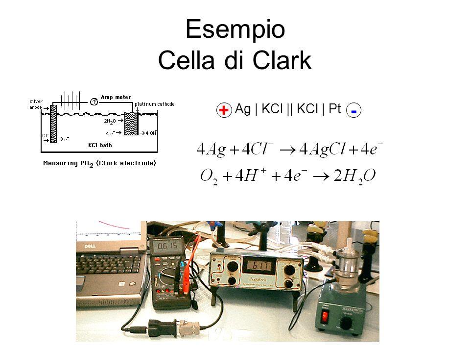 Esempio Cella di Clark Ag | KCl || KCl | Pt + -