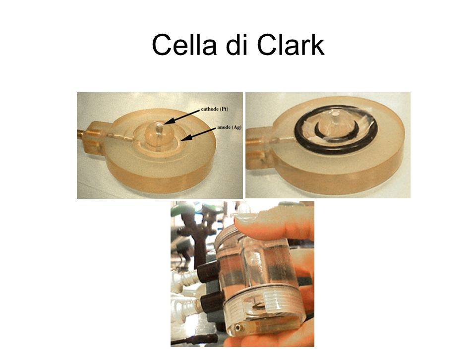 Cella di Clark