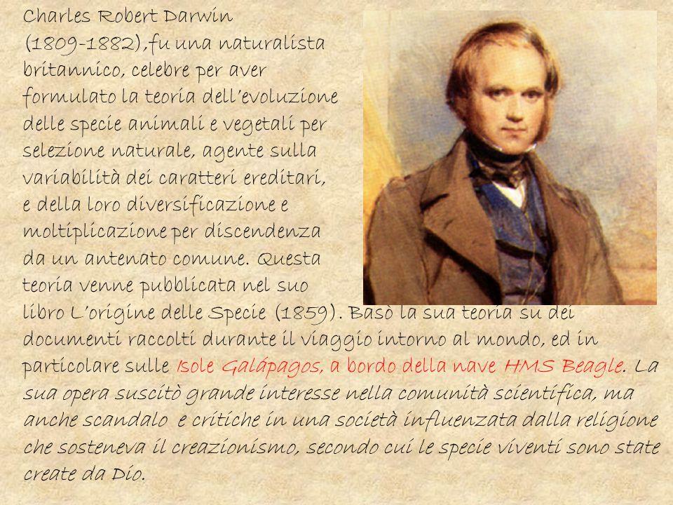 Charles Robert Darwin (1809-1882),fu una naturalista. britannico, celebre per aver. formulato la teoria dell'evoluzione.