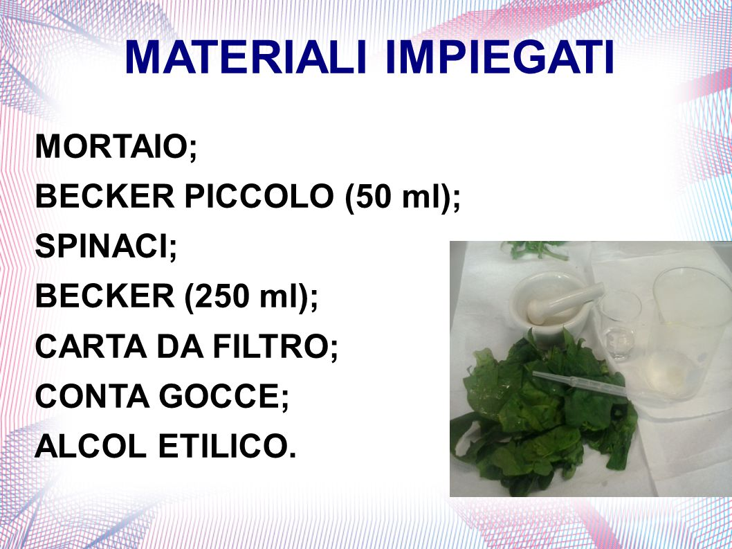 MATERIALI IMPIEGATI MORTAIO; BECKER PICCOLO (50 ml); SPINACI;