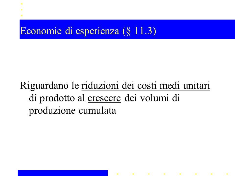 Economie di esperienza (§ 11.3)