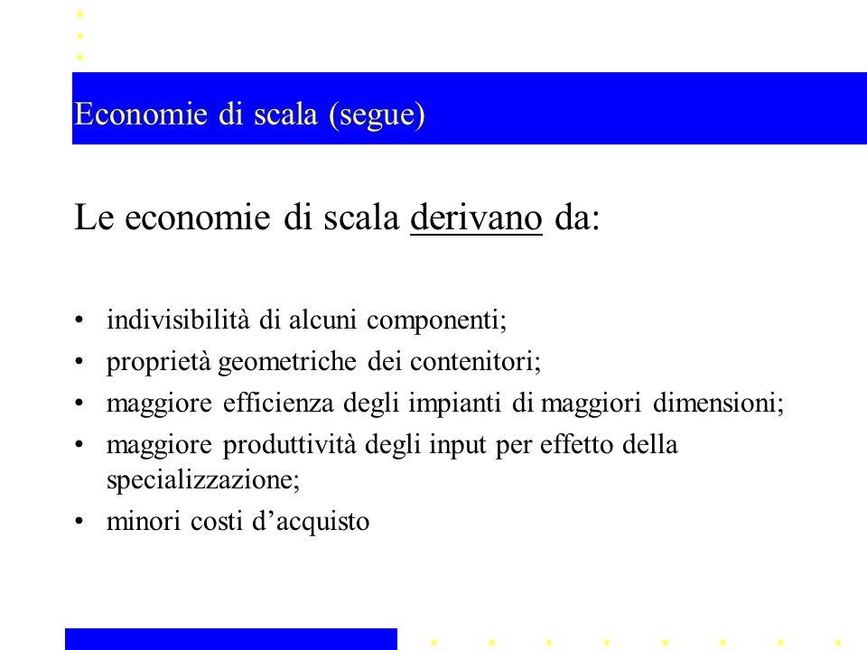 Economie di scala (segue)