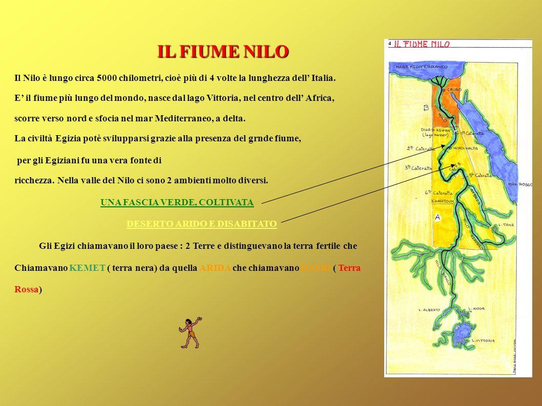 IL FIUME NILO Il Nilo è lungo circa 5000 chilometri, cioè più di 4 volte la lunghezza dell' Italia.