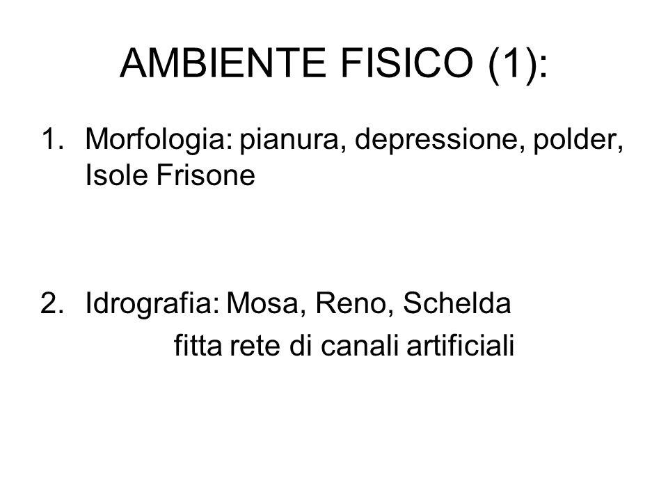 AMBIENTE FISICO (1):Morfologia: pianura, depressione, polder, Isole Frisone. Idrografia: Mosa, Reno, Schelda.