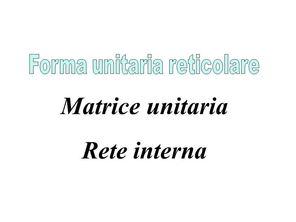 Forma unitaria reticolare
