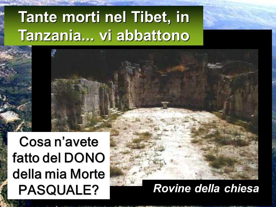 Tante morti nel Tibet, in Tanzania... vi abbattono