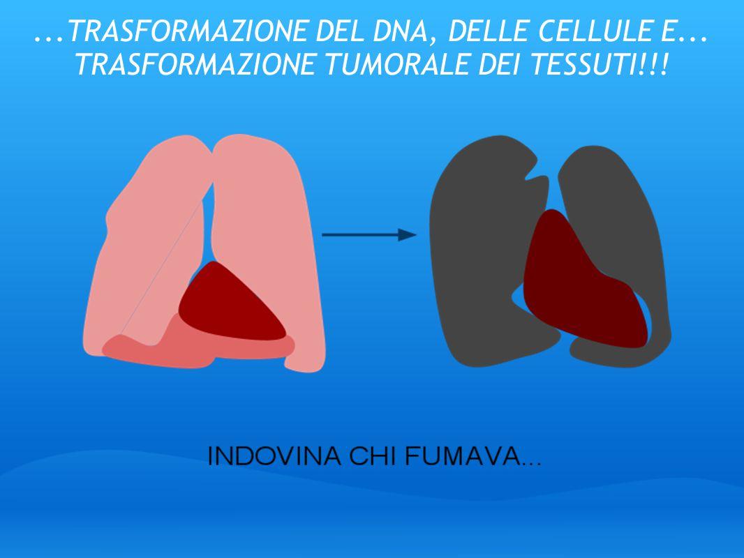 TRASFORMAZIONE DEL DNA, DELLE CELLULE E
