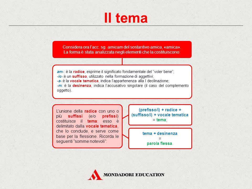 Il tema Considera ora l'acc. sg. amicam del sostantivo amica, «amica». La forma è stata analizzata negli elementi che la costituiscono: