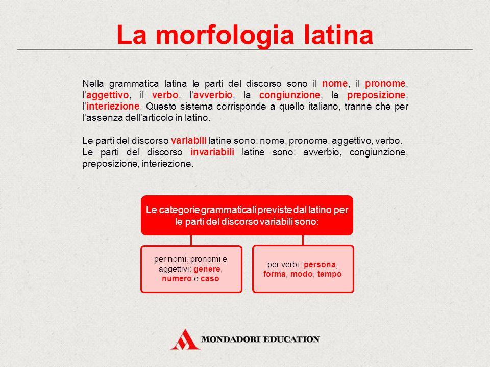 La morfologia latina