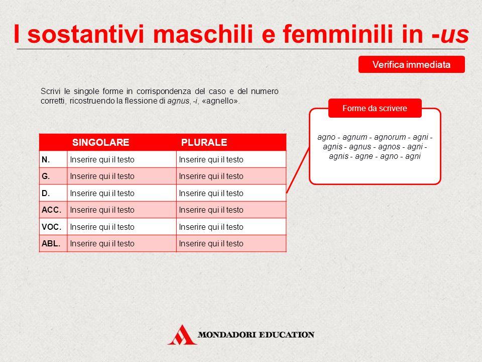 I sostantivi maschili e femminili in -us