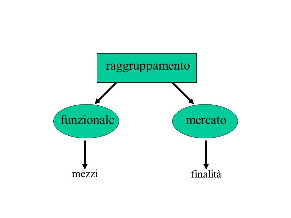 raggruppamento funzionale mercato mezzi finalità