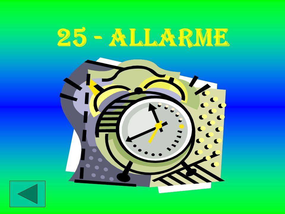 25 - ALLARME