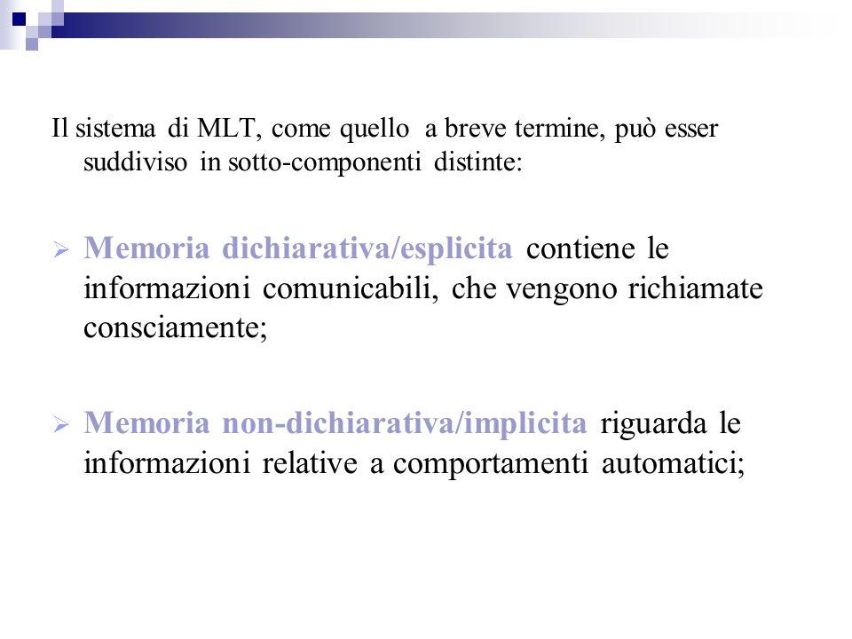 Il sistema di MLT, come quello a breve termine, può esser suddiviso in sotto-componenti distinte: