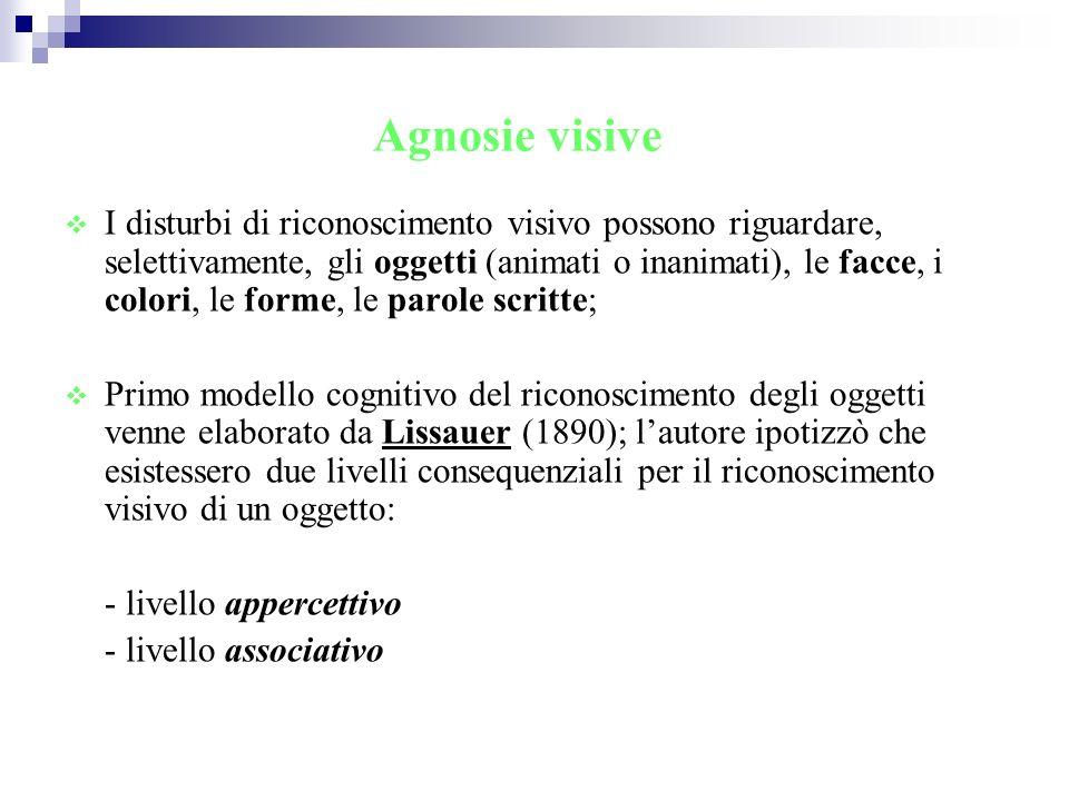 Agnosie visive