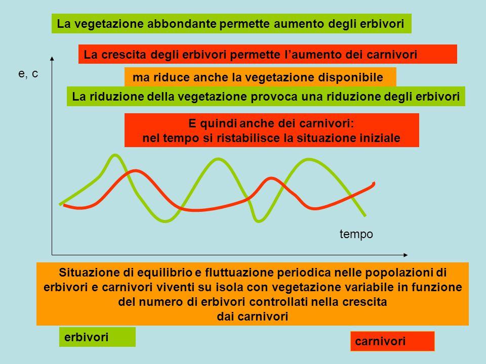 La vegetazione abbondante permette aumento degli erbivori