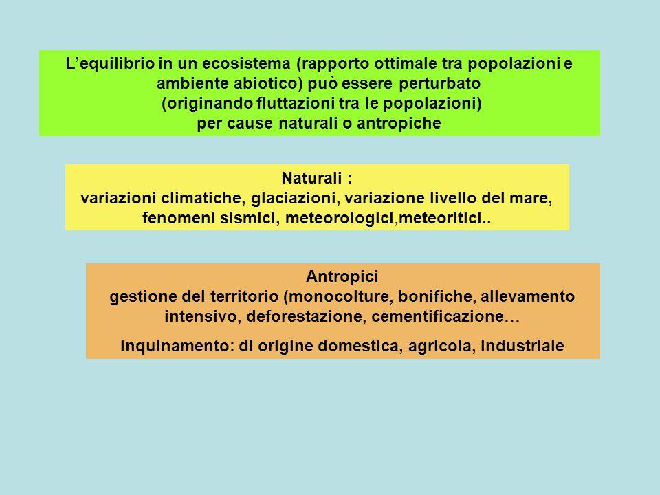 Inquinamento: di origine domestica, agricola, industriale