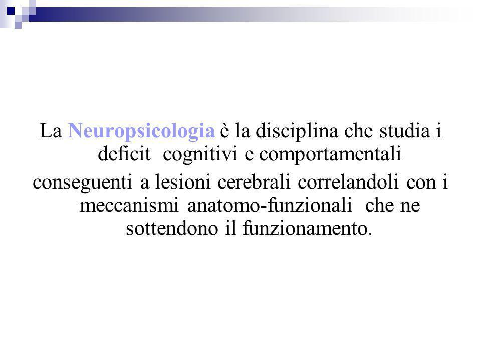 La Neuropsicologia è la disciplina che studia i deficit cognitivi e comportamentali