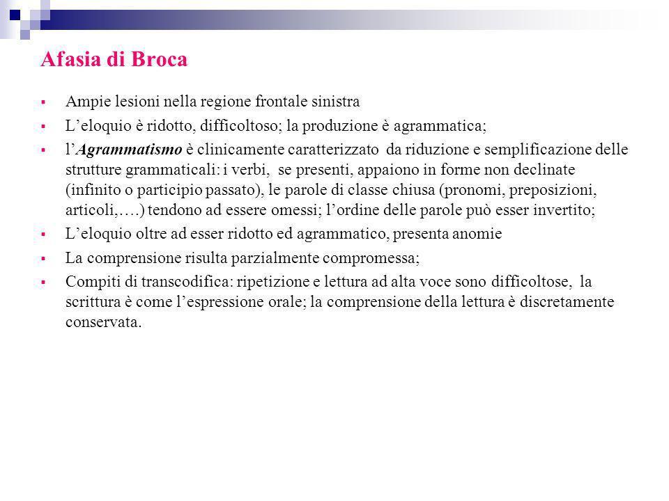 Afasia di Broca Ampie lesioni nella regione frontale sinistra