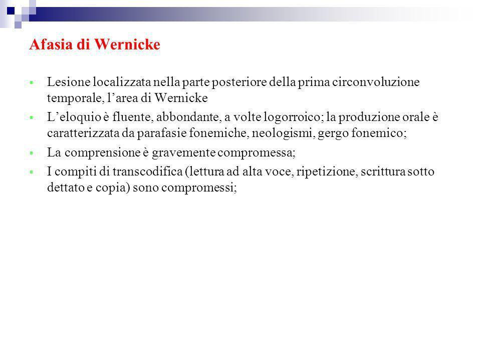 Afasia di Wernicke Lesione localizzata nella parte posteriore della prima circonvoluzione temporale, l'area di Wernicke.