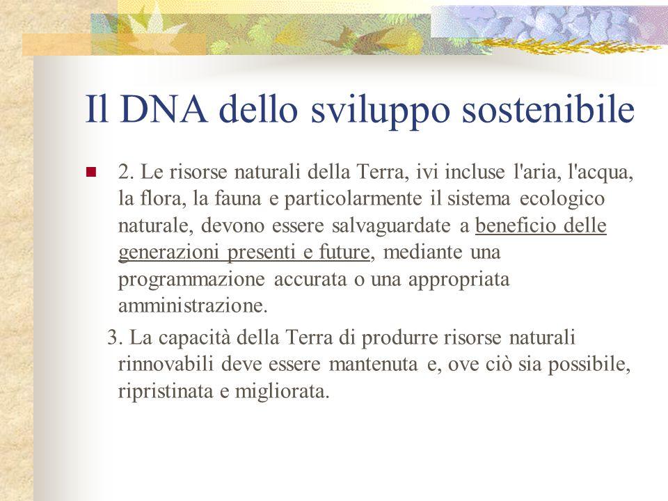 Il DNA dello sviluppo sostenibile