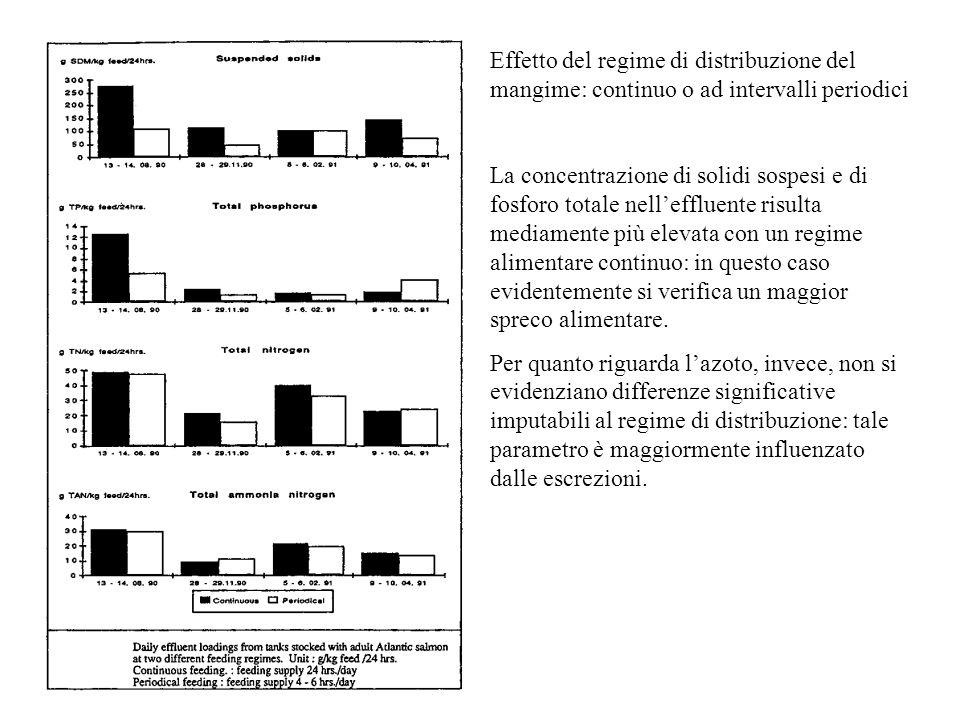 Effetto del regime di distribuzione del mangime: continuo o ad intervalli periodici