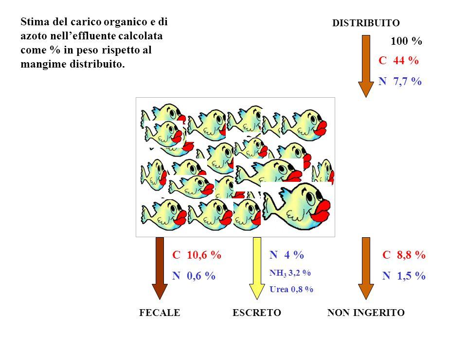 Stima del carico organico e di azoto nell'effluente calcolata come % in peso rispetto al mangime distribuito.