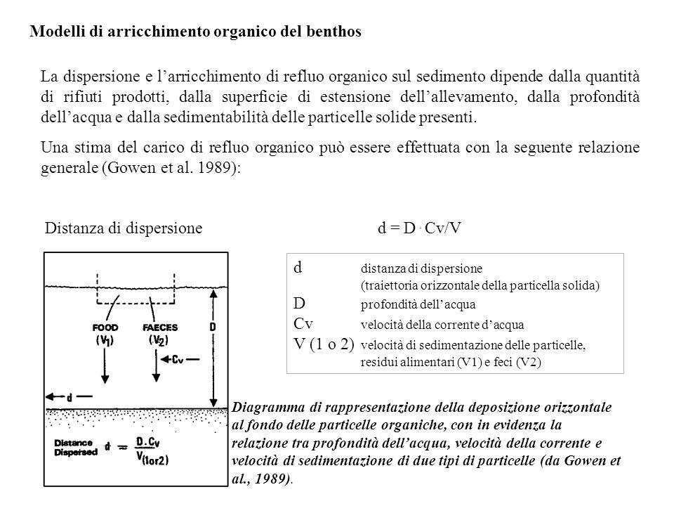 Modelli di arricchimento organico del benthos