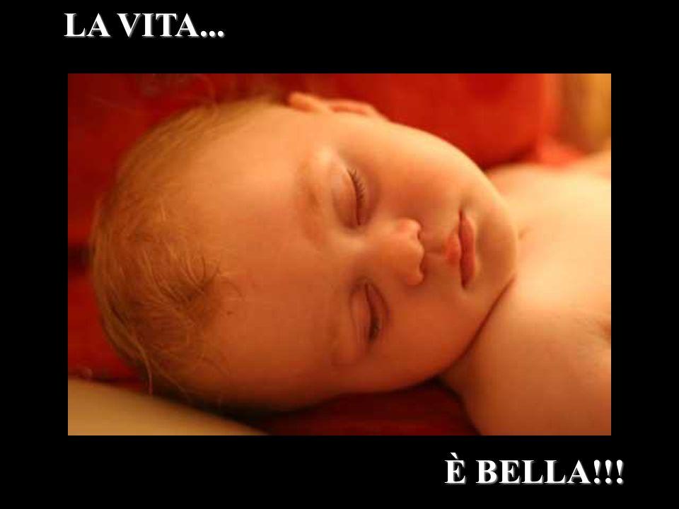 LA VITA... È BELLA!!!