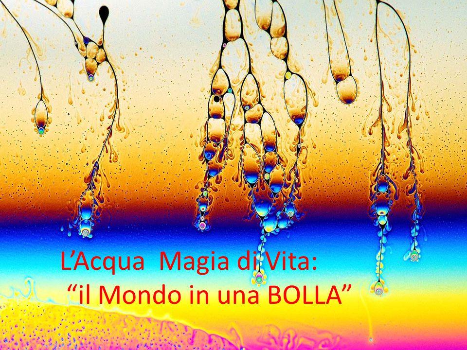 L'Acqua Magia di Vita: il Mondo in una BOLLA