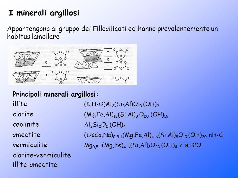 I minerali argillosi Appartengono al gruppo dei Fillosilicati ed hanno prevalentemente un habitus lamellare.