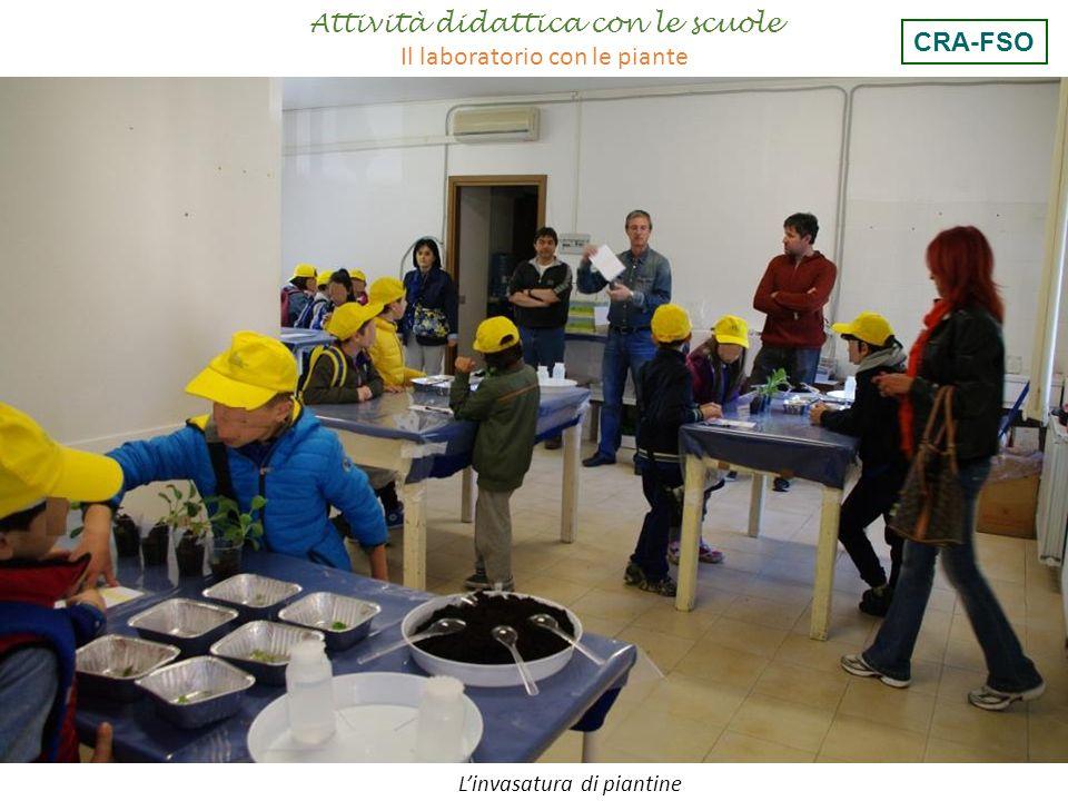 Attività didattica con le scuole Il laboratorio con le piante CRA-FSO