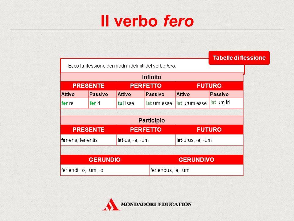 Il verbo fero Tabelle di flessione Infinito PRESENTE PERFETTO FUTURO