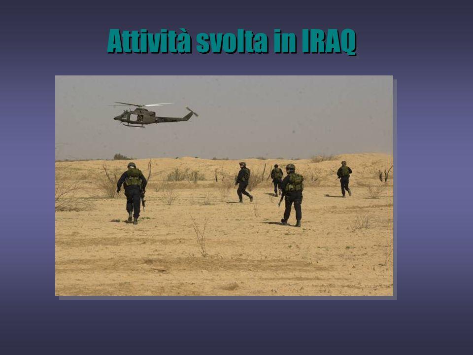 Attività svolta in IRAQ