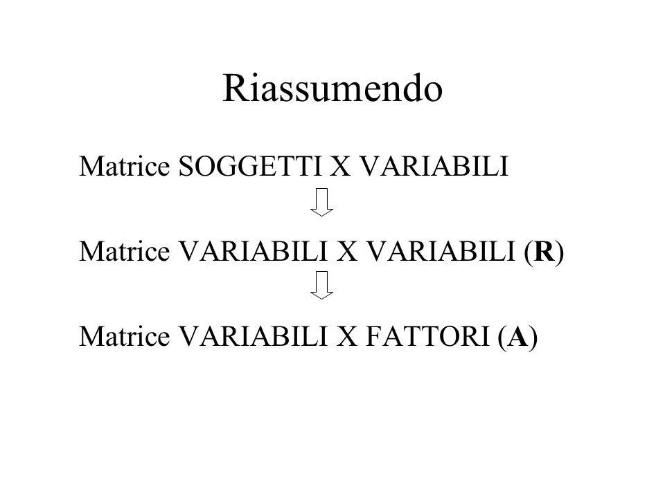 Riassumendo Matrice SOGGETTI X VARIABILI